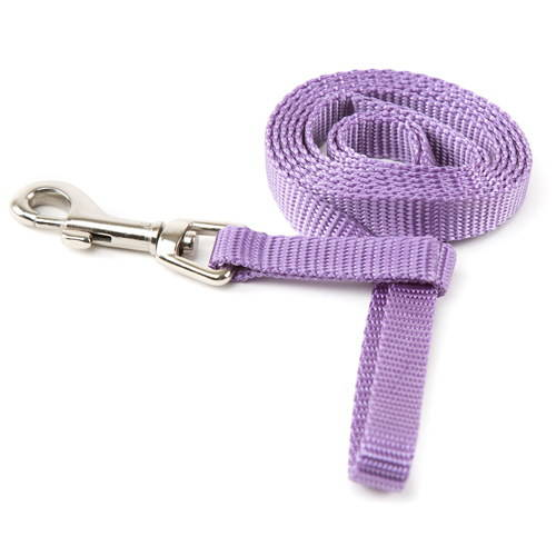 Correa para perros de nylon Linea Basic Color Lila