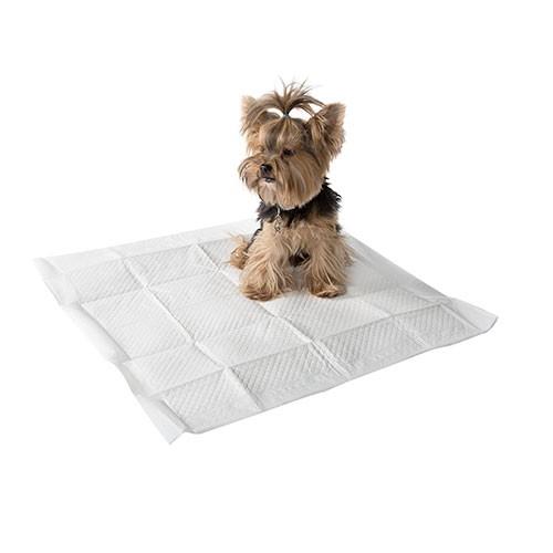 Empapadores para perros con aroma a limón TK-Pet