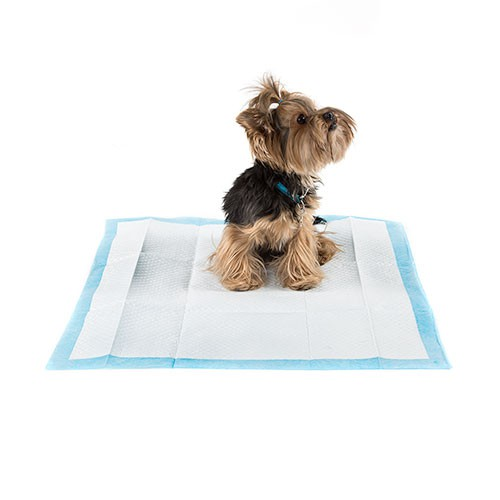 Dogs training pads eliminates odors TK-Pet