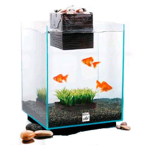 Fluval Chi Aquarium Kit