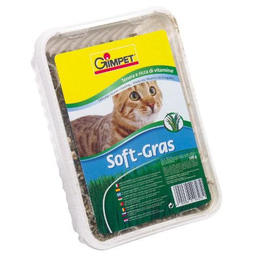 GimPet Soft Grass hierba para gatos tierna