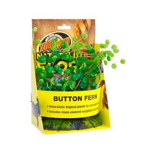 Naturalistic Flora Button Fern Tiendanimal