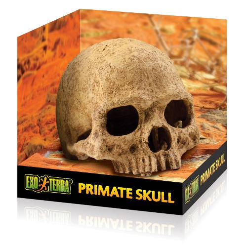 Refugio para reptiles Exo Terra Primate Skull