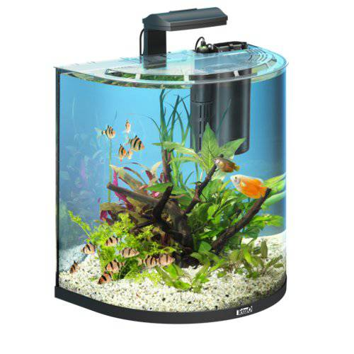 Acuario panor mico tetra aquaart explorer 30 l tiendanimal for Red para peces de acuario