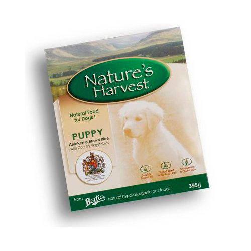 Nature's Harvest Puppy Comida húmeda para perros Pollo