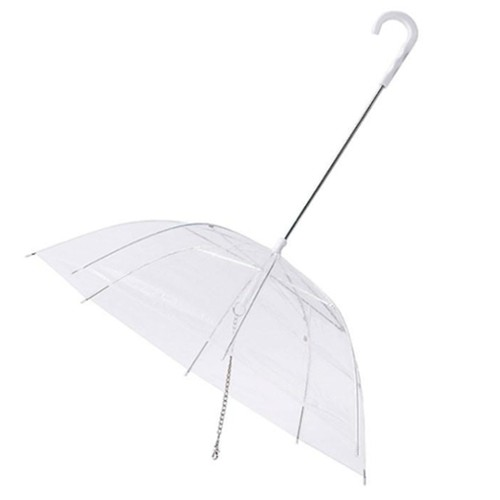 Umbrella with leash for dogs