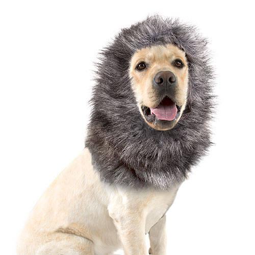 Peluca para perros color gris y negro 40 cm