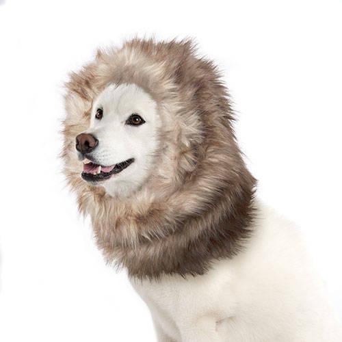 Peluca para perros color marrón león 40 cm