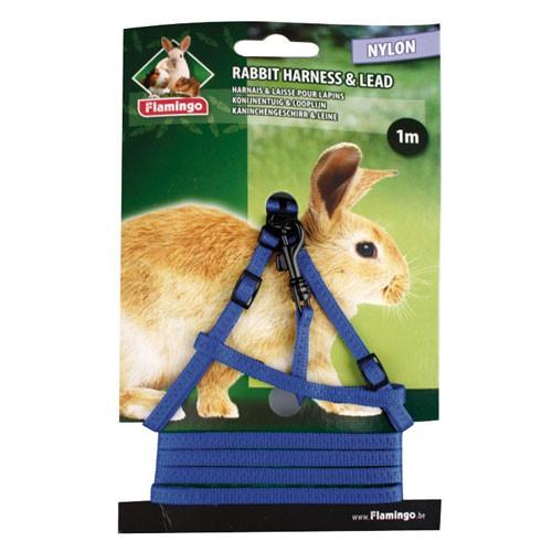 Petral y correa para conejos
