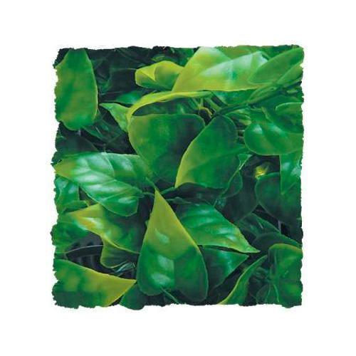 Plantas artificiales phyllo mexicano tiendanimal for Estanques artificiales o prefabricados
