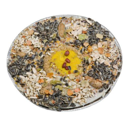 Pizza deluxe de semillas para pájaros