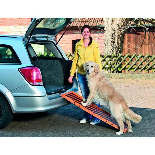 Rampa de madera de acceso para perros 120cm