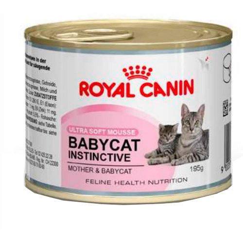 royal canin babycat instinctive tiendanimal. Black Bedroom Furniture Sets. Home Design Ideas