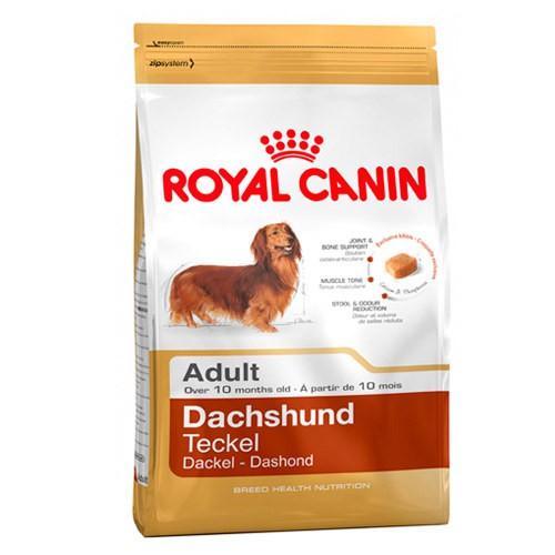 Royal Canin Teckel