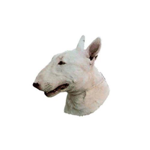 Pegatinas y llavero: Bull Terrier