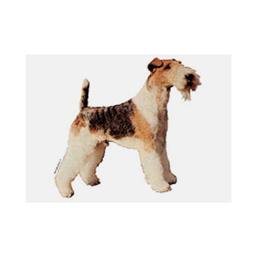 Pegatinas y llavero: Fox Terrier