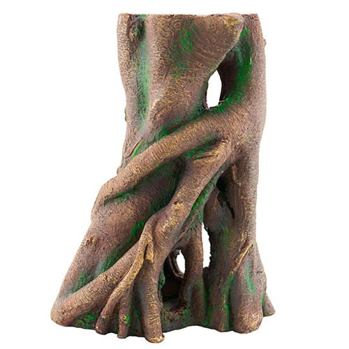 Tronco Nayeco de árbol Manglar para acuarios