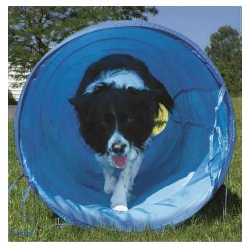 Túnel flexible de agility para perros