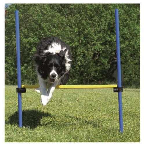 Valla de salto de agility para perros