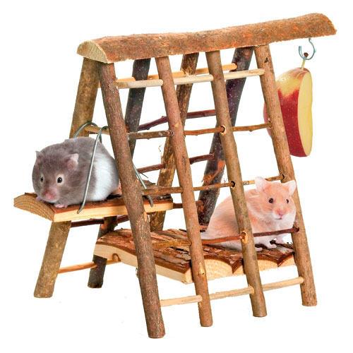 Zona de juegos de escalada para roedores