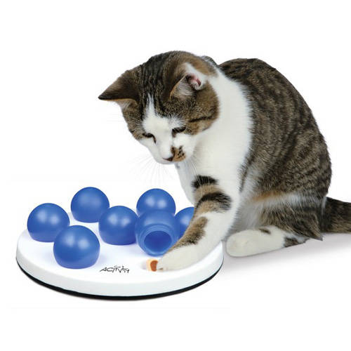 Juego de inteligencia para gatos Cat Activity Solitario