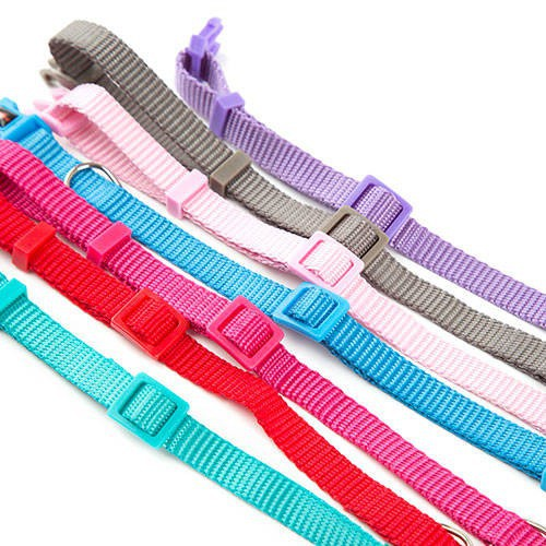 Collar para perros de nylon Linea Basic Color Aguamarina