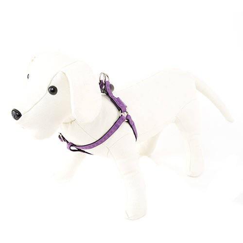 Arnés para perros MacLeather Classic Color Lila