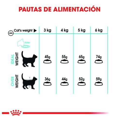 Royal Canin Urinary pienso para gatos