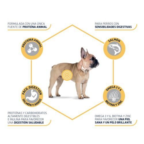 Advance Mini Sensitive Pienso para perros con salmón y arroz