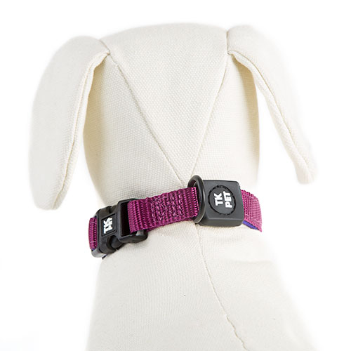 TK-Pet Neo Classic Nylon and neoprene purple necklace for dogs