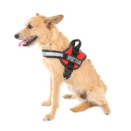 Arnés para perros ergonómico TK-Pet Himalaya