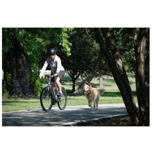 Correa para pasear en bicicleta Cycleash Petego