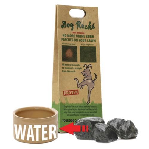 Dog Rocks piedras para evitar manchas de orina