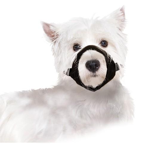 Bozal de nylon para perros tiendanimal for Estanque para perros