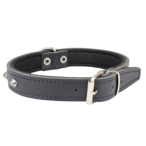 Collar de cuero negro con remaches para perros