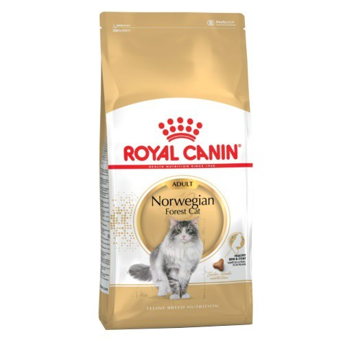 Royal Canin Norwegian Forest Cat pienso para gato adulto