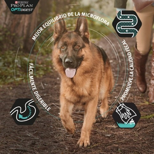 Purina Pro Plan OptiDigest de cordero para perros grandes y atléticos