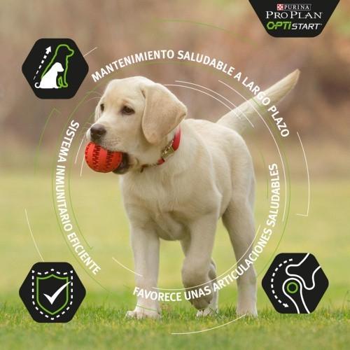 Purina Pro Plan OptiDigest de cordero para cachorros