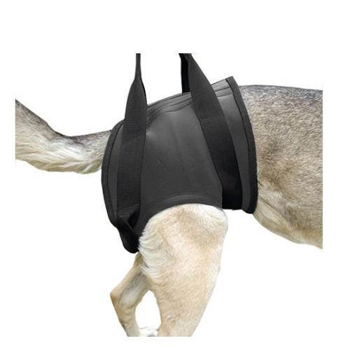 Arnés ortopédico para perros Julius K9 trasero