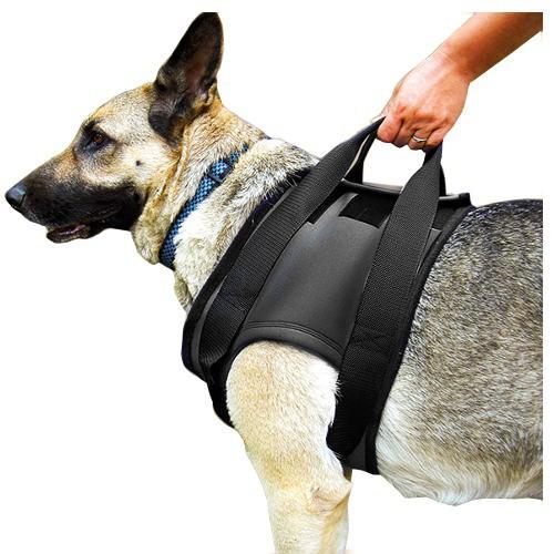 Arnés ortopédico para perros Julius K9 frontal