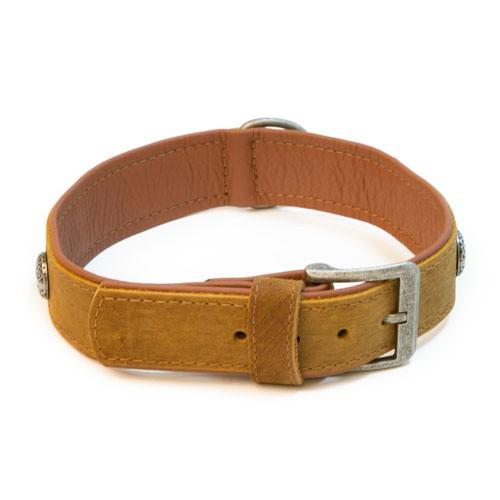 Collar de cuero con tachuelas Wondermals Sol marrón
