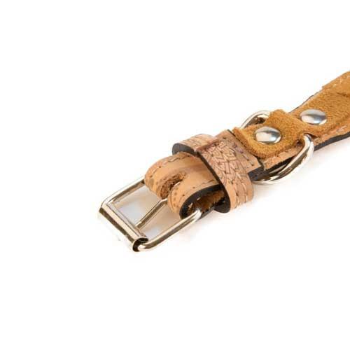 Collar de piel para perros TK-Pet Mandala