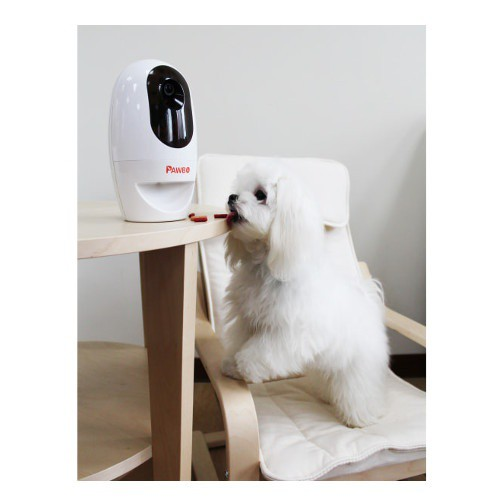 Pet camera Pawbo with dispenser and laser