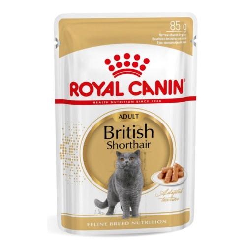 Royal Canin British Shorthair comida húmeda para gato adulto