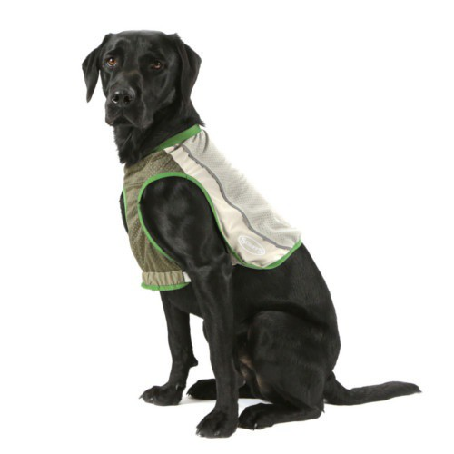 Protective dog vest Insect Shield