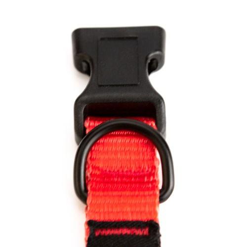 Collar de nylon TK-Pet España