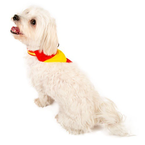 Bandana para perros TK-Pet España