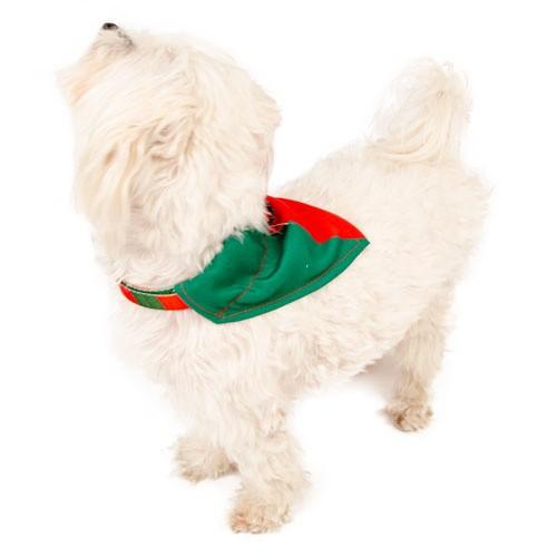 Bandana para perros TK-Pet Portugal