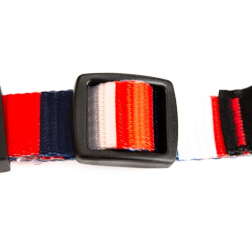 Collar de nylon TK-Pet Francia