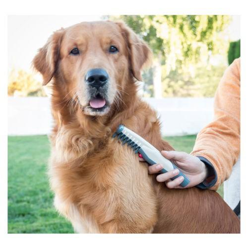 Peine cortanudos eléctrico para perros